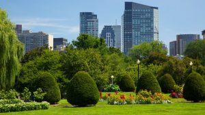 Boston Common in springtime
